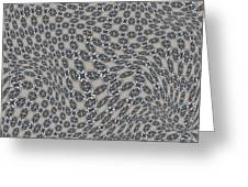 Fabric Design 11 Greeting Card by Karen Musick