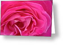Fabric Of Rose Greeting Card