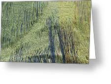 Fabric Texture Greeting Card