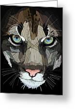 Face De Puma Greeting Card
