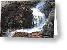 Face In The Falls Greeting Card