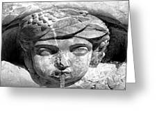 Face In The Fountain Greeting Card