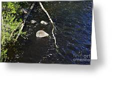 Face In The River Greeting Card