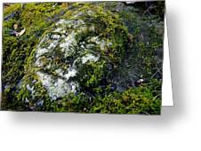 Face In The Stone Greeting Card