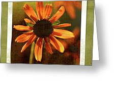 Face The Day Greeting Card
