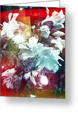 Faded Dreams Greeting Card