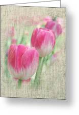 Faded Floral 8 Greeting Card