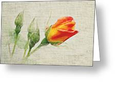 Faded Floral 9 Greeting Card