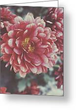 Faded Florals Greeting Card