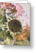 Faded Flower Greeting Card