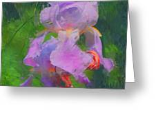 Fading Glory Greeting Card