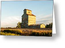 Fading Grains  Greeting Card