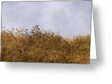 Fairmont  Ridge Greeting Card