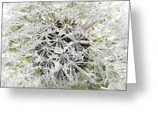 Fairy Crystals Greeting Card