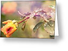 Fairy Drops Greeting Card