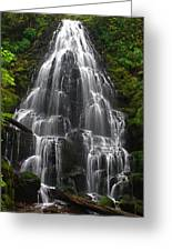 Fairy Falls Greeting Card by Todd Kreuter