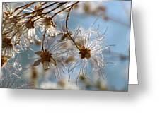 Fairy Flowers Greeting Card
