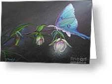 Fairy Lantern's Glow Greeting Card