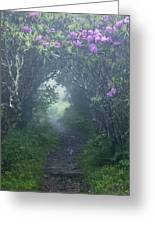 Fairy Path Greeting Card by Rob Travis