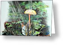 Fairy Shower Greeting Card