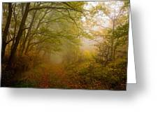Fairy Wood Greeting Card by Evgeni Dinev