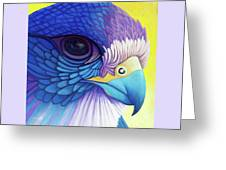 Falcon Medicine Greeting Card