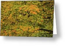Fall #2 Greeting Card