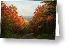 Fall Along Greenland Road Greeting Card
