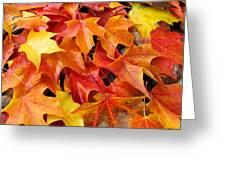Fall Art Prints Red Orange Yellow Autumn Leaves Baslee Troutman Greeting Card