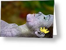 Fall Asleep Greeting Card