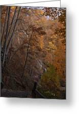 Fall At Amicalola Falls Greeting Card