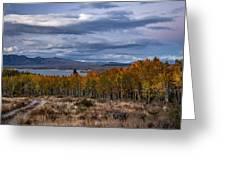 Fall At Hilton Creek Greeting Card