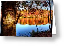 Fall At Lake Greeting Card