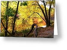 Fall At Lincoln Lake	 Greeting Card