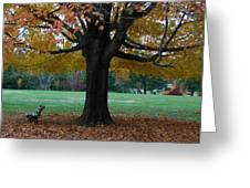 Fall At Maymont Greeting Card