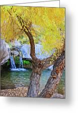 Fall At Murray Falls I Greeting Card