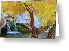 Fall At Murray Falls II Greeting Card