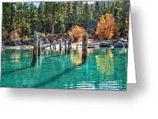 Fall At Skunk Harbor Lake Tahoe Greeting Card