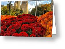 Fall At The Peabody Greeting Card