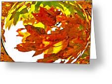 Fall Ball Greeting Card