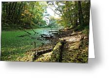 Fall By A River Greeting Card