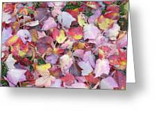 Fall Carpet Greeting Card