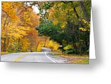 Fall Color Along Road  5643 Greeting Card