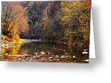 Fall Color Elk River Greeting Card