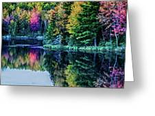 Fall Color Explosion Greeting Card