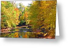 Fall Color On Creek  5597 Greeting Card