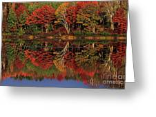 Fall Color Reflected In Thornton Lake Michigan Greeting Card