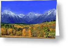 Fall Colored Aspens Grand Tetons Np Greeting Card