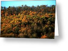 Fall Colors 16 Greeting Card