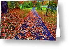 Fall Colors 2014-#15 Greeting Card